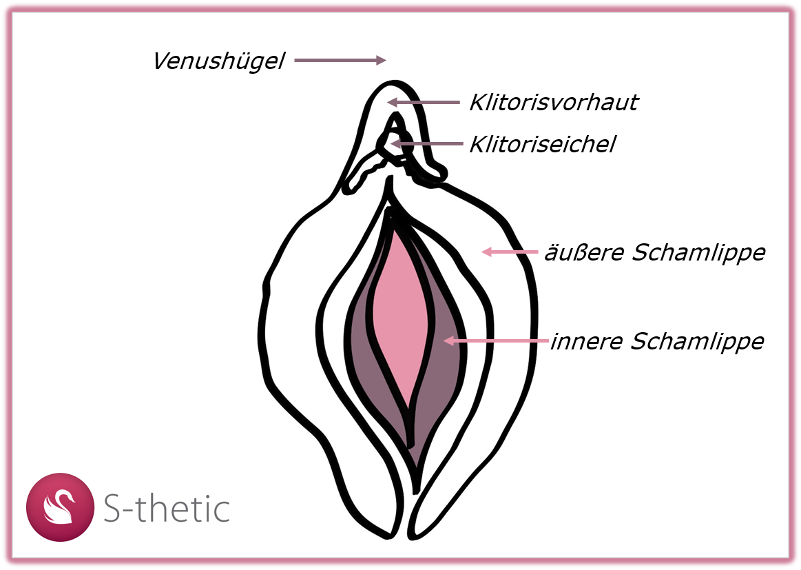 Intimchirurgie Frau bei S-thetic